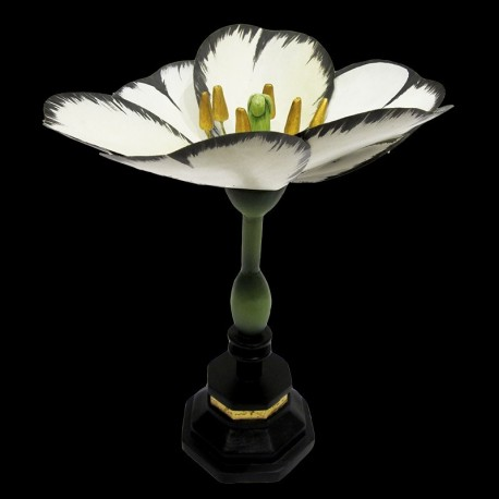 Fleur Tulipe Blanche Au Bain Marie
