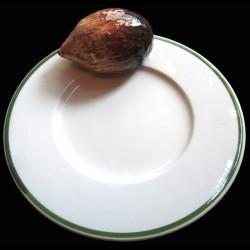 Herisson sur petite assiette D16,6 cm