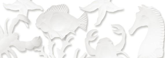 Engraved glasses Nemo
